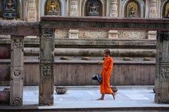People at Mahabodhi Temple in Gaya, India. Bodh Gaya, India - Jul 9, 2015. A monk walking at Mahabodhi Temple Complex in Bodhgaya, India. The Mahabodhi Vihar, a Royalty Free Stock Photo