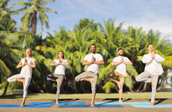 People making yoga in tree pose on mats outdoors Royalty Free Stock Photo
