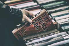 People, Man, Hand, Books, Paper Royalty Free Stock Images