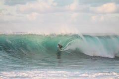 People, Man, Surfing, Surfer, Sport Stock Image
