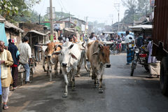 People on market in Kumrokhali, West Bengal, India Royalty Free Stock Images