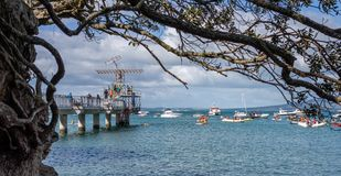 AUCKLAND, NEW ZEALAND - APRIL 07, 2018: Spectators and Competitors at the Murrays Bay Wharf Birdman Festival royalty free stock photos
