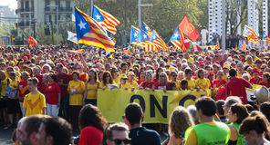 People  at  National Day of Catalonia in Barcelona Stock Photography