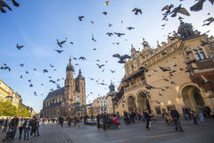 People near the Church of Our Lady Assumed also known as St. Mary's Church at the Main Market Square. KRAKOW, POLAND - NOV 11, 2014: Unidentified people near the Stock Photos