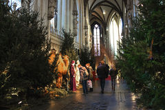 People near the nativity scenes in the cathedral Royalty Free Stock Image