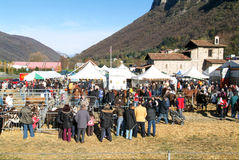 People observing the animals at the rural fair Stock Photo