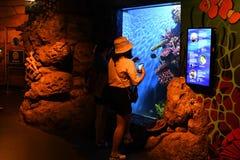 People in Ocean World aquarium in bangkok city. People inside Ocean World aquarium in bangkok city ,thailand ,9th february 2019 stock images