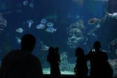 People in Ocean World aquarium in bangkok city. People inside Ocean World aquarium in bangkok city ,thailand ,9th february 2019 stock photos