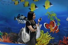 People in Ocean World aquarium in bangkok city. People inside Ocean World aquarium in bangkok city ,thailand ,9th february 2019 royalty free stock image