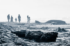 People On Desolate Windy Beach Stock Image