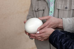 People with ostrich egg Stock Images