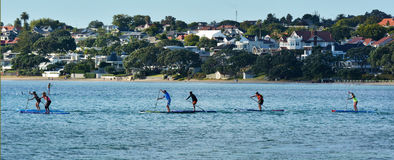 People paddle boarding Royalty Free Stock Photo