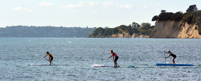 People paddle boarding Royalty Free Stock Image