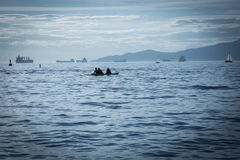 Kayaking ocean mountains water Vancouver coast Royalty Free Stock Photography