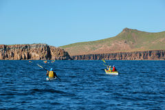 People Paddling Sea Kayaks in the Sea of Cortez in Baja. Adventure travelers paddle sea kayaks on the Sea of Cortez near the island of Espiritu Santo in southern royalty free stock photo