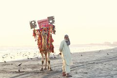 People of pakistan. A man standing on the beech  with his camel to give kids some ride. Looking at camera and giving a cute smile Stock Photos