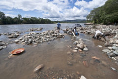 People panning for Gold in the Napo River, Ecuador Stock Images
