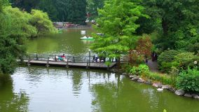People in the Park near the Lake. Video. the place is in Germany Frankfurt stock video footage