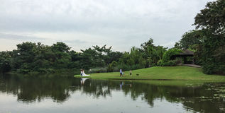 People at the park in Singapore Stock Photography