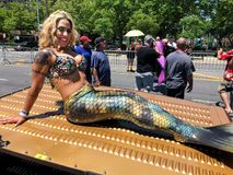 Free People Participate In The 36th Annual Mermaid Parade In Coney Island Royalty Free Stock Photos - 119644028