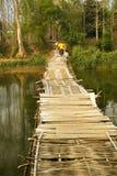 People passing bamboo bridge on limestone mountain background Royalty Free Stock Images