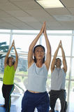 People Performing Yoga Royalty Free Stock Photography