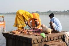People performs pooja on sacred river Narmada in Maheshwar Stock Photo