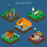 People With Pets Composition Set Royalty Free Stock Image