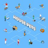 People With Pets Flowchart. People spending time with their pets isometric flowchart on blue background 3d vector illustration Stock Photography