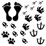 People and pets footsteps Royalty Free Stock Images