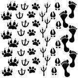 People and pets footsteps. Vector illustration Stock Photo