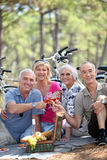 People during picnic. Senior people during a picnic Stock Image
