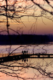 People on pier. Visible from behind tree stock photo