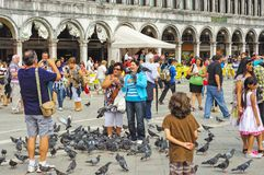 People and pigeons in Venice royalty free stock photos