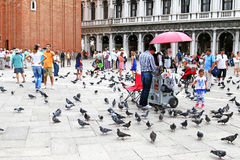 People and pigeons walking around at St Mark's Campanile Royalty Free Stock Photography
