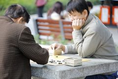 Men playing go chess in the zhongshan park of xiamen, adobe rgb royalty free stock photography