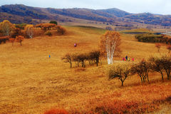 People play on the meadows. The photo was taken in Wulanbutong Keshiketeng Banner Chifeng city Inner Mongolia Autonomous Region, China royalty free stock photos