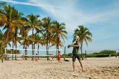 People Play Pickup Games Of Beach Volleyball In Miami Stock Photography