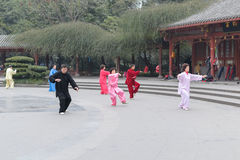 People play Tai Chi Stock Images