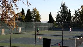 People play tennis at park stock footage