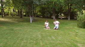 People playing in big dominoes sitting on grass. stock video footage