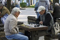 People playing chess in the park Royalty Free Stock Image