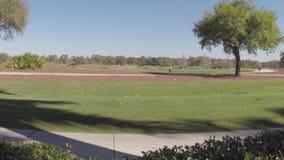 People playing a game of golf Daytona Beach, Florida stock footage