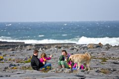 People playing with a dog, Doolin, Ireland. People playing with a golden retriever at Doolin Bay, co. Clare, Ireland Royalty Free Stock Images