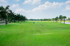 People playing golf Stock Image