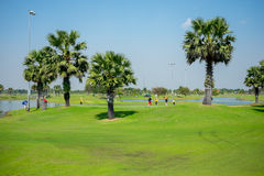 People playing golf Royalty Free Stock Photos