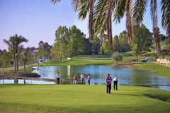 People playing golf. On the green field Stock Photo