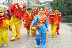 People playing lion  dances to celebrate festivals Stock Images