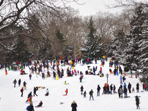 People playing in the snow in Central Park Stock Photo