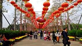 People playing in SunWen park on Chinese New Year holidays stock footage